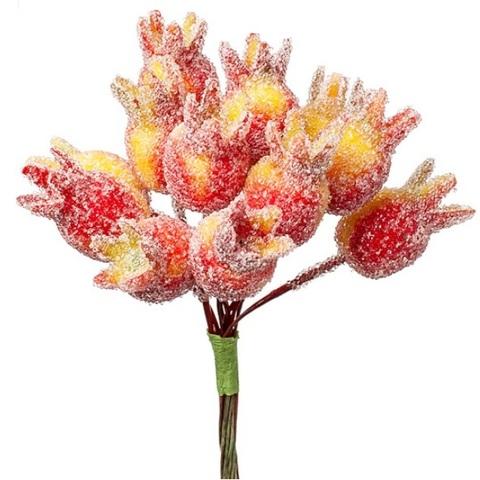 Набор ягод засахаренных на вставках 12шт., размер: D1,5x3xL11см, цвет: красный/желтый