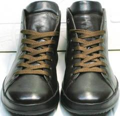 Мужские осенние кеды ботинки со шнуровкой Ikoc 1770-5 B-Brown.