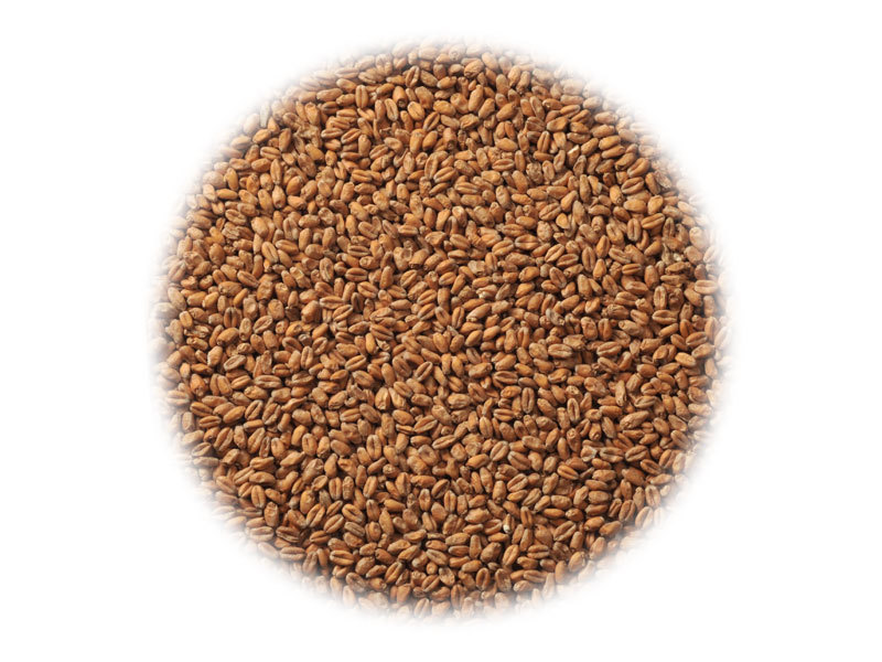 Солод Солод Viking Wheat (Пшеничный) 10039_P_1495041485674.jpg