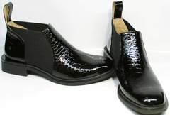 Короткие ботильоны ботинки без шнурков Ari Andano 721-2 Black Snake.
