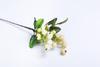 Белая ягода.