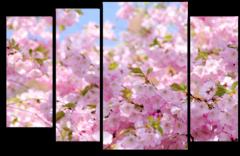 """Модульная картина """"Сакура. Цветение"""""""