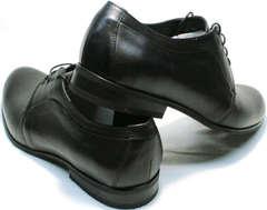 Стильные мужские туфли дерби Ikoc 060-1 ClassicBlack.