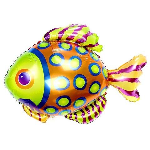 Шар фигура Разноцветная рыбка, 86 см