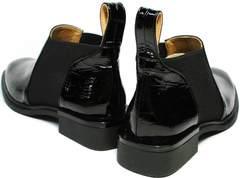 Туфли ботинки с квадратным носом женские Ari Andano 721-2 Black Snake.