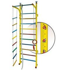Детский спортивный комплекс (ДСК) V-Sport СТ-002