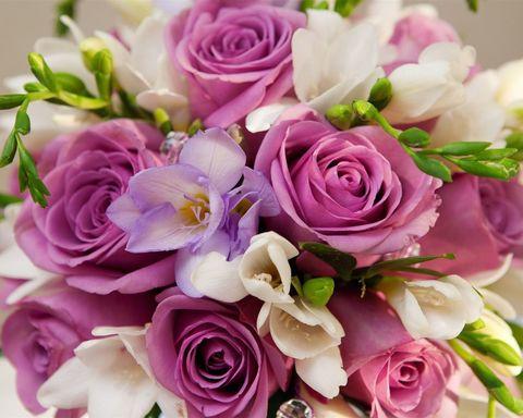 Алмазная Мозаика 40x50 Букет роз вблизи