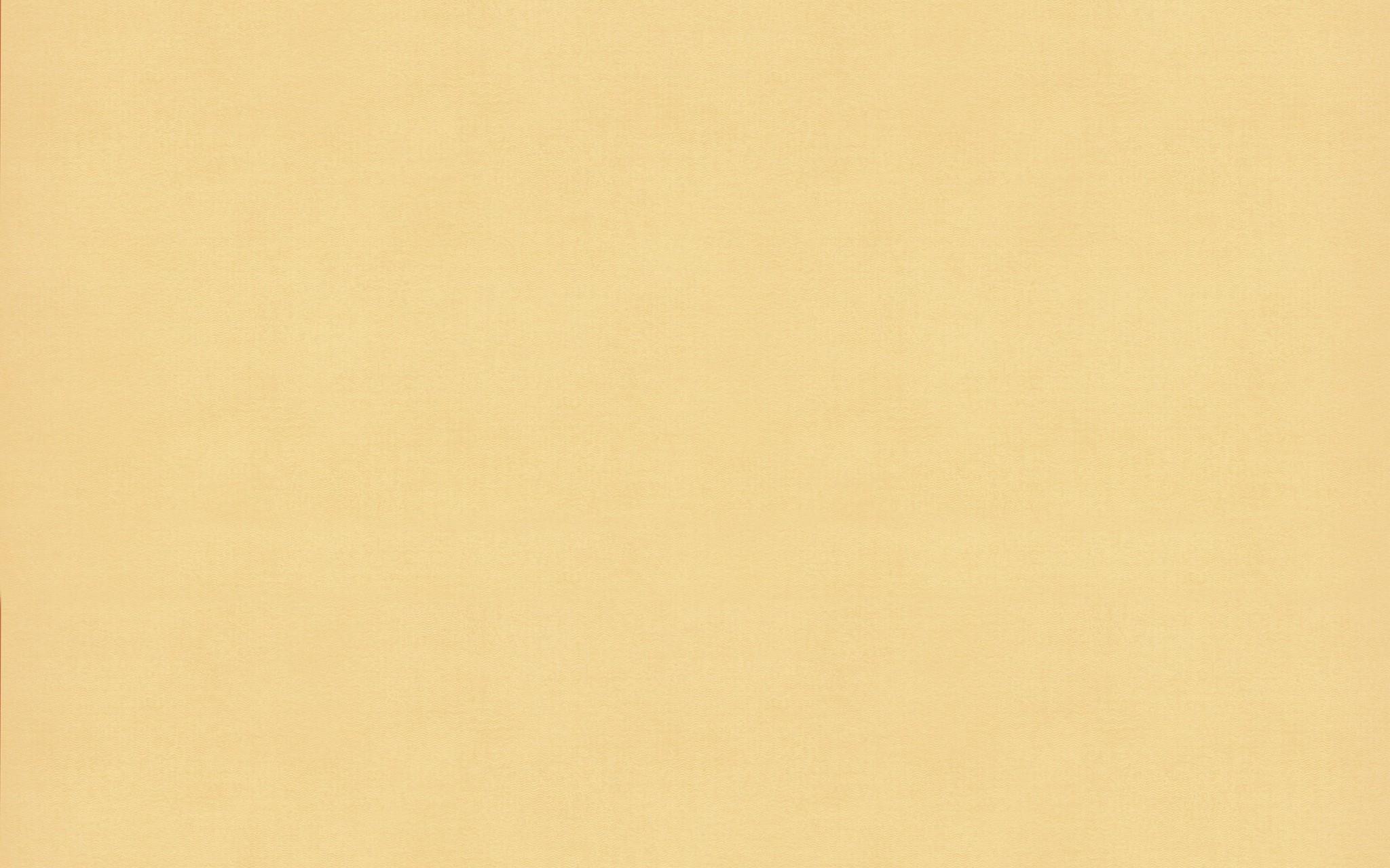4916 SWEET CORN