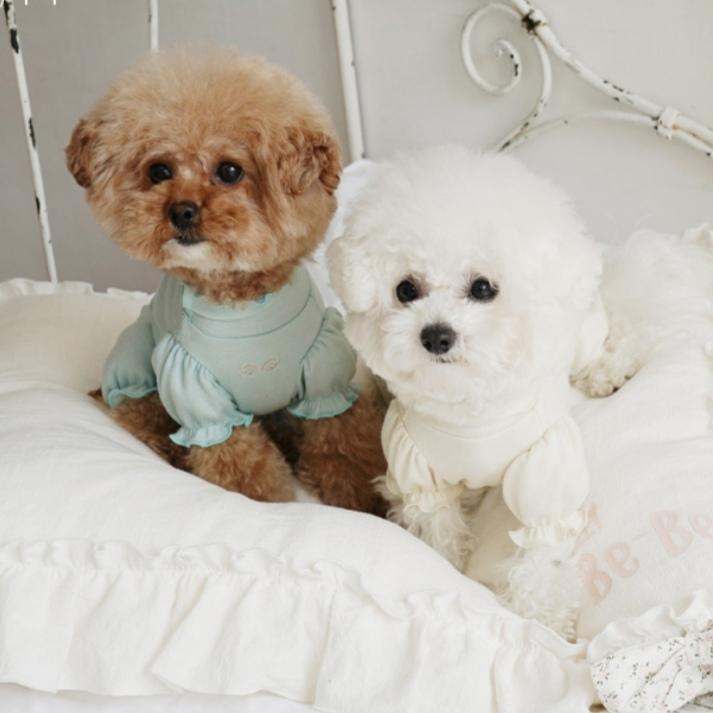 костюмы для собак для дома