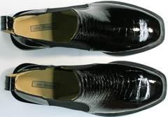 Модные ботинки ботильоны женские низкие Ari Andano 721-2 Black Snake.