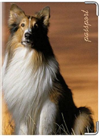 """Обложка для ветеринарного паспорта """"Колли"""""""
