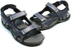 Модные мужские сандали в спортивном стиле Mi Lord 2066EKO Blue.