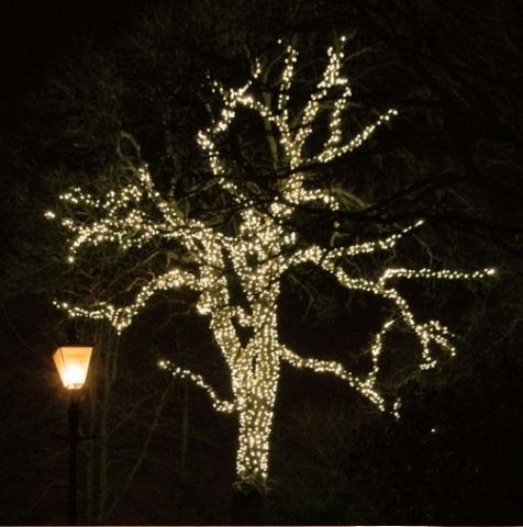Гирлянды на деревья нити string уличные, фасадные наружные