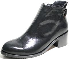Ботильоны кожаные на толстом низком каблуке EL Passo
