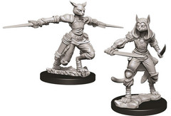 D&D Nolzur's Marvelous Miniatures - Female Tabaxi Rogue