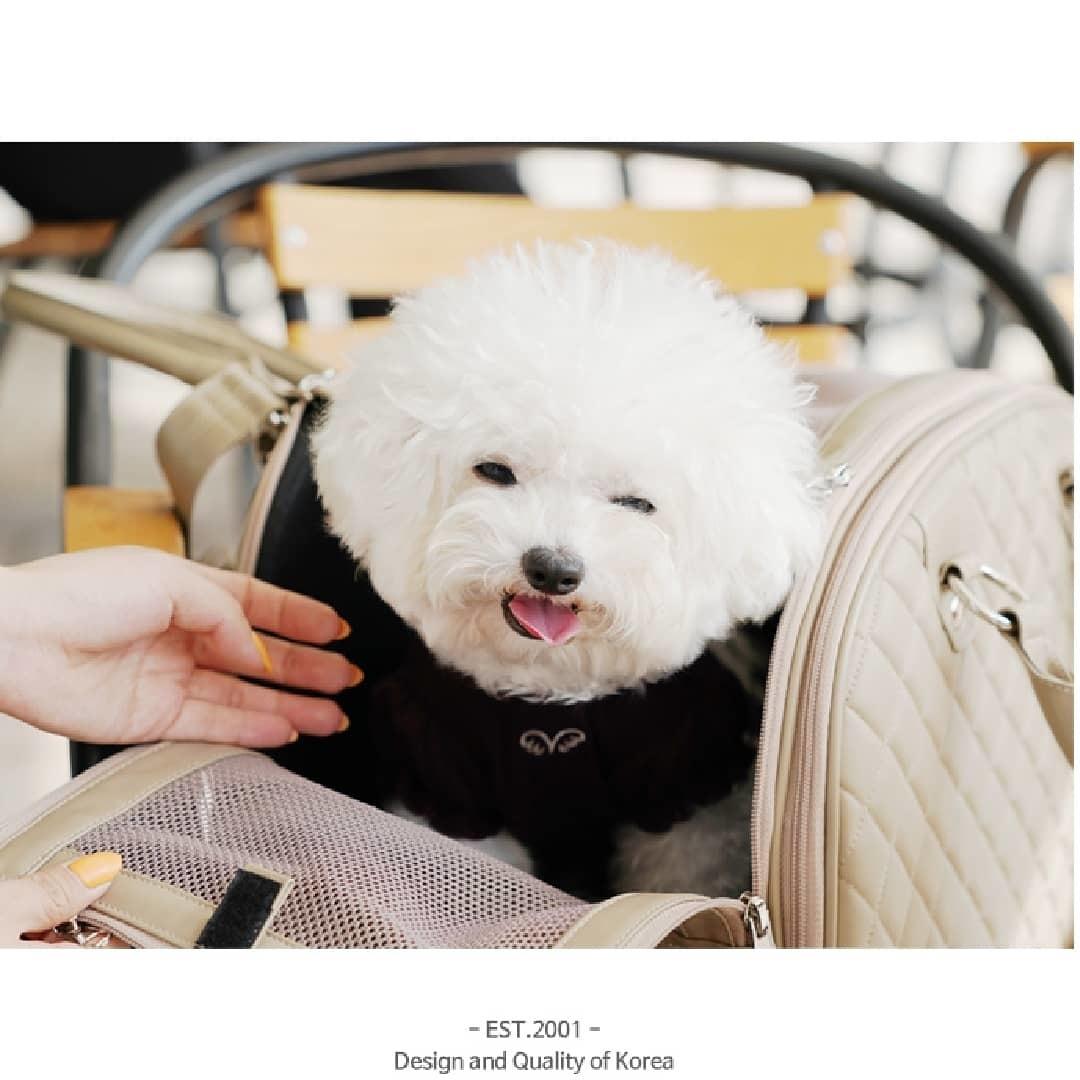 сумка переноска для собак в самолет