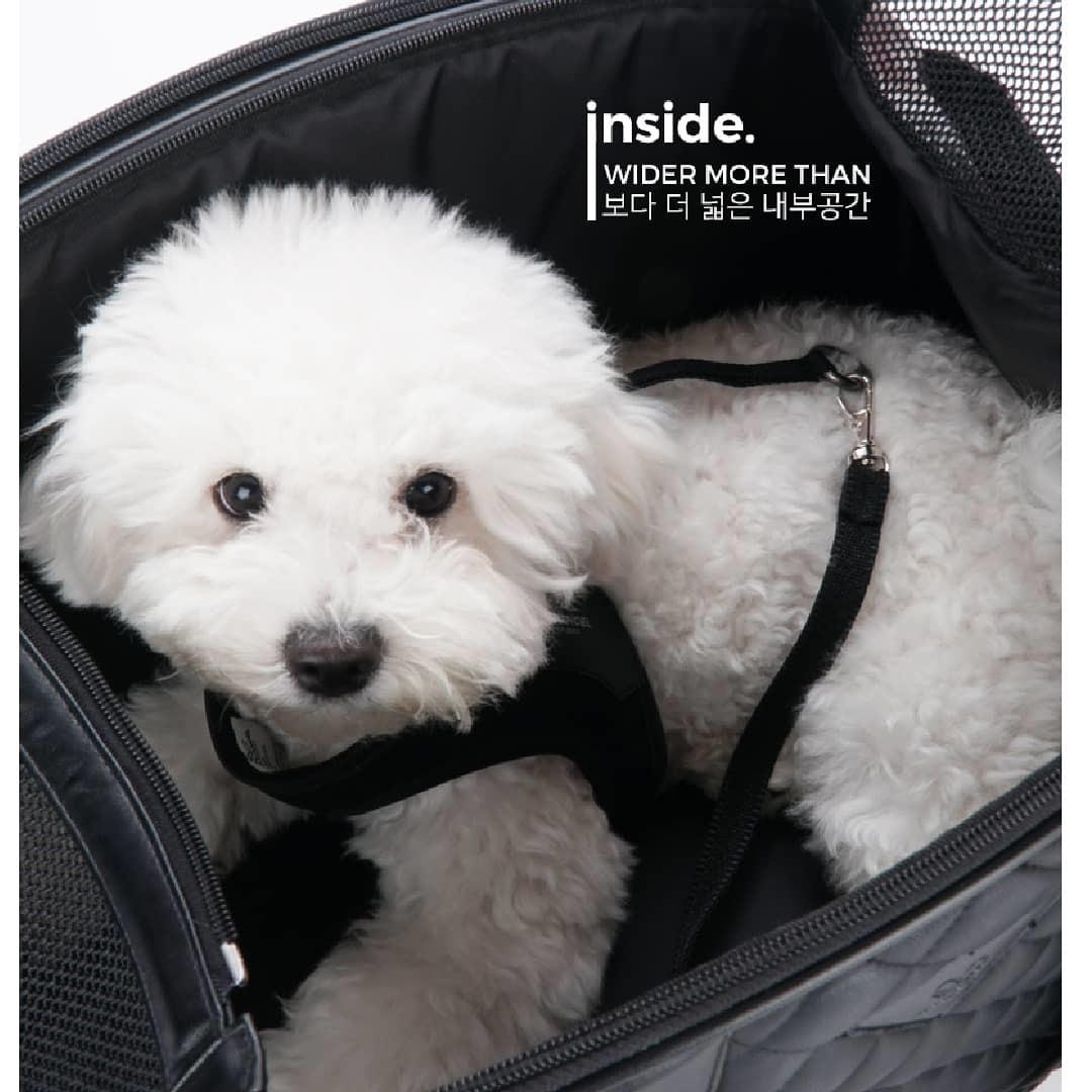 купить сумку для собаки для самолета