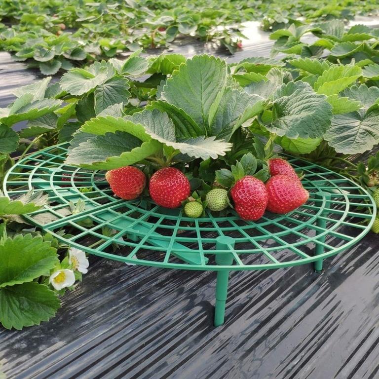 Садовая стойка-опора для садовых ягод «Клубничка» 5-ти штук фото