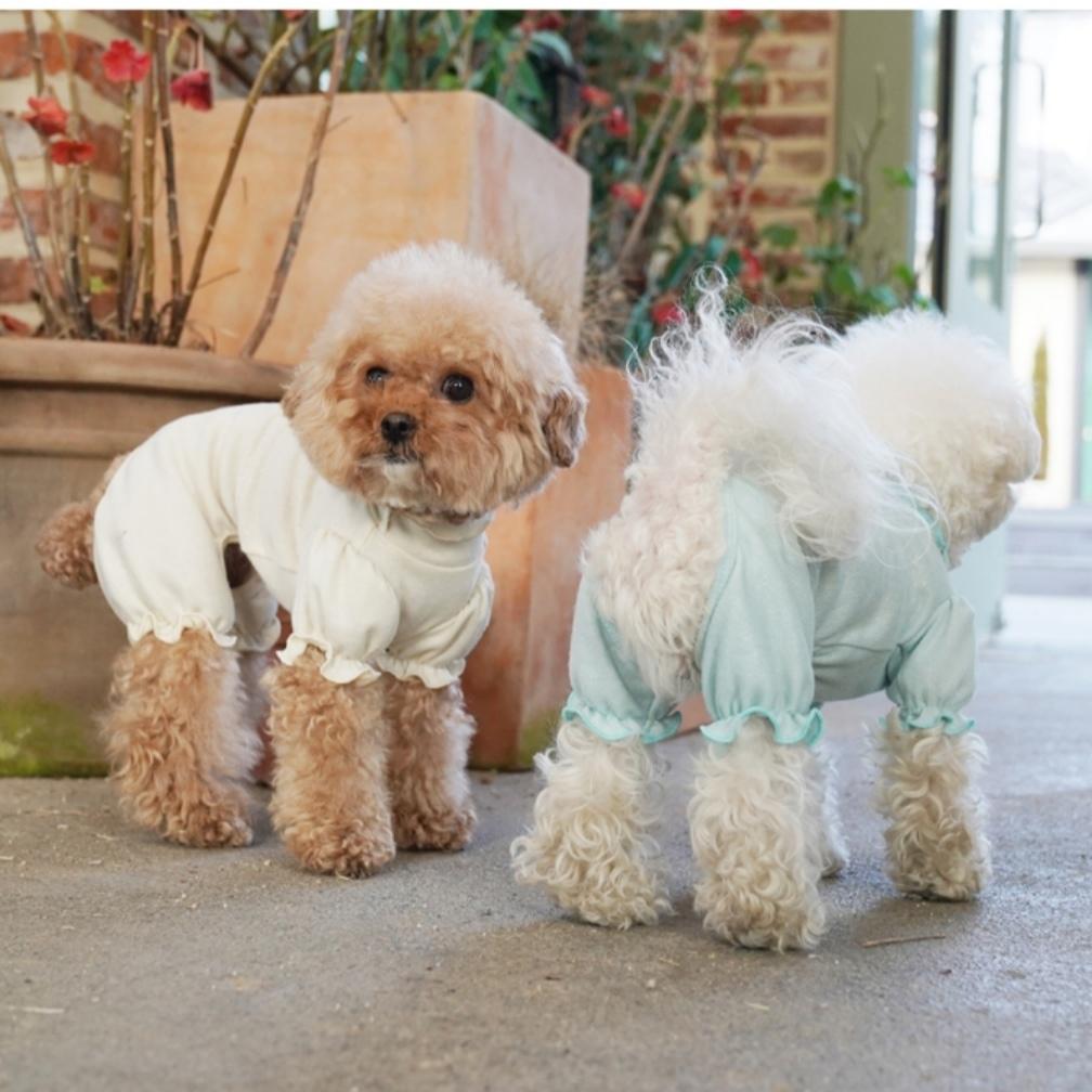 домашние костюмы для собак