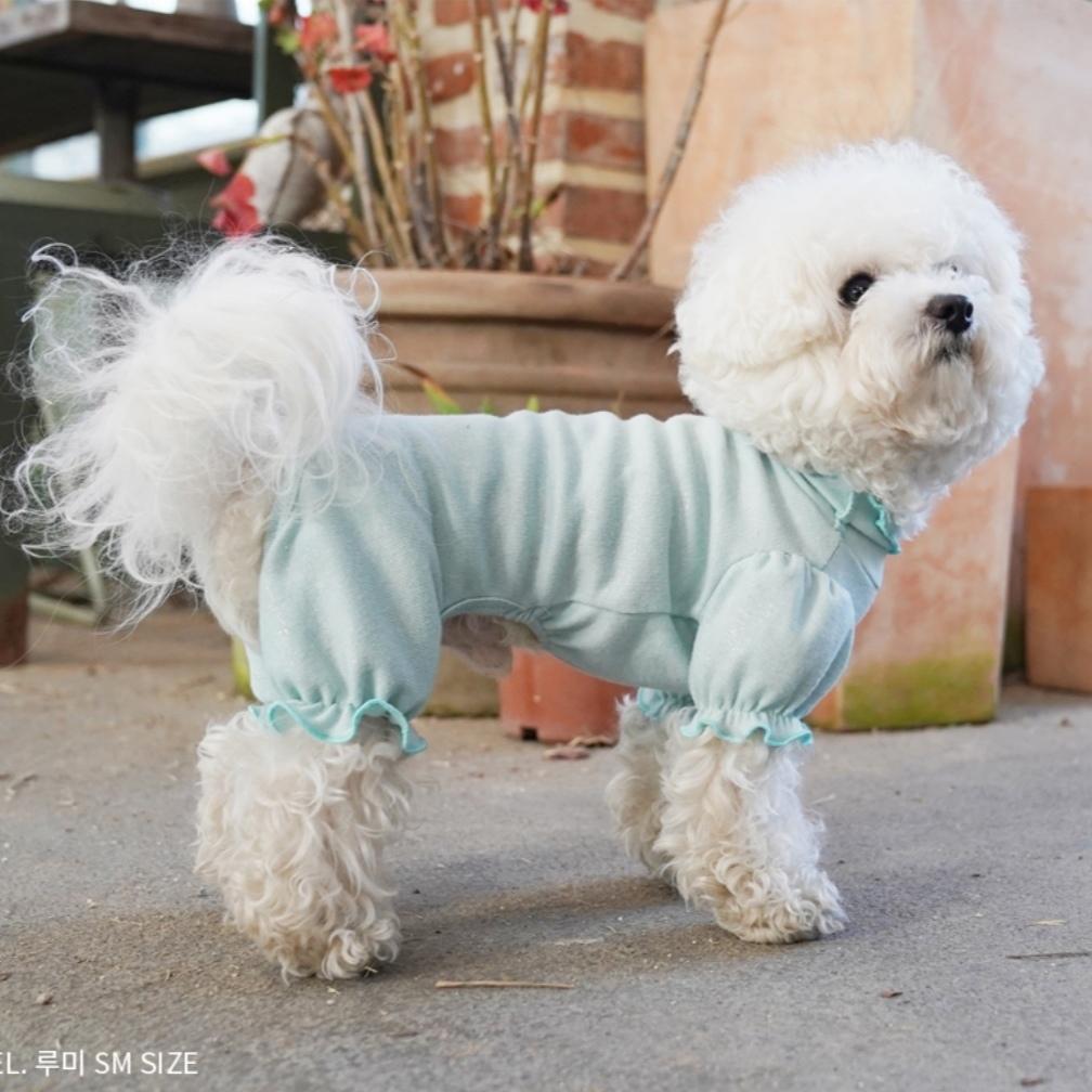 домашний костюм для собаки