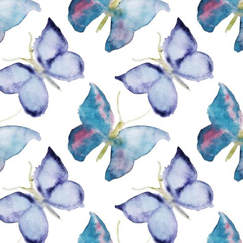 Морозные бабочки
