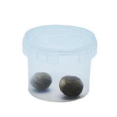 Пряность Мускатный орех 8 грамм