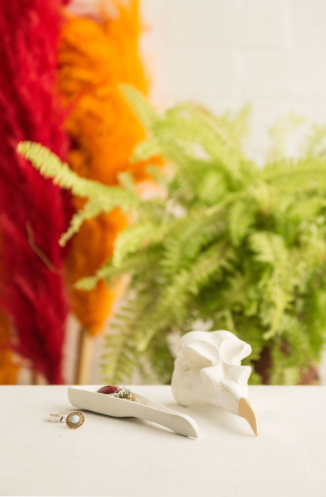 Шкатулка для хранения ювелирных украшений Bird Skull череп птицы (белый) Suck UK SK TIDYBIRD1 | Купить в Москве, СПб и с доставкой по всей России | Интернет магазин www.Kitchen-Devices.ru