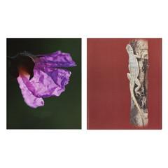 Тетрадь общая Attache Карандаши А5 80 листов в клетку на скрепке (обложка в ассортименте)