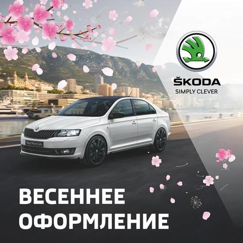 Макет для соцсетей Skoda