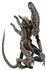 Aliens 7