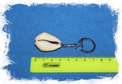 Брелок из морской ракушки Ципрея Монета