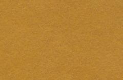 Фетр мягкий, 20*30 см 100% полиэстер, толщина 1 мм .