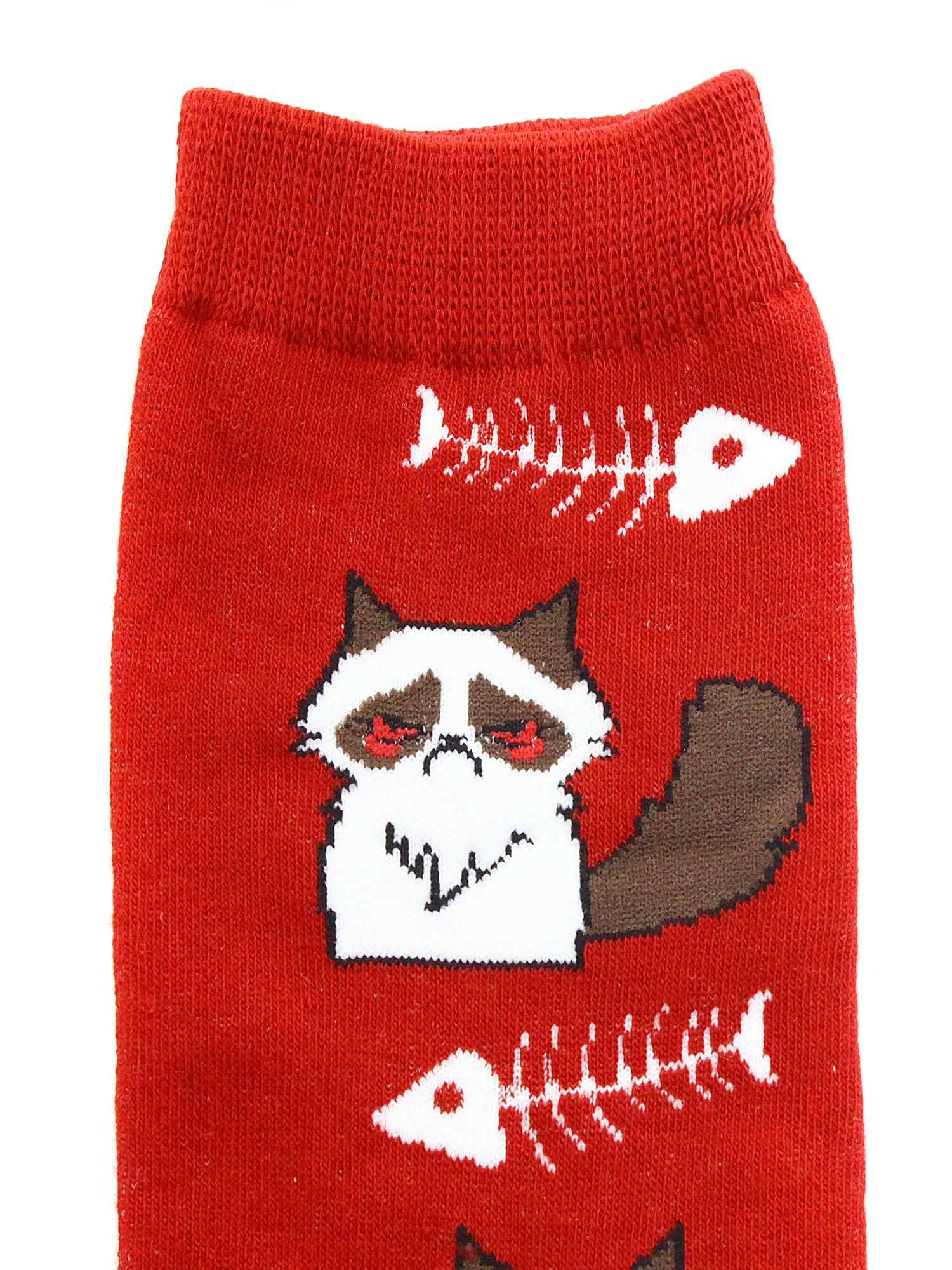 Носки Голодный Котик