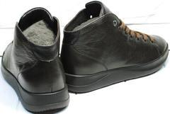 Осенние мужские кеды ботинки на шнурках Ikoc 1770-5 B-Brown.