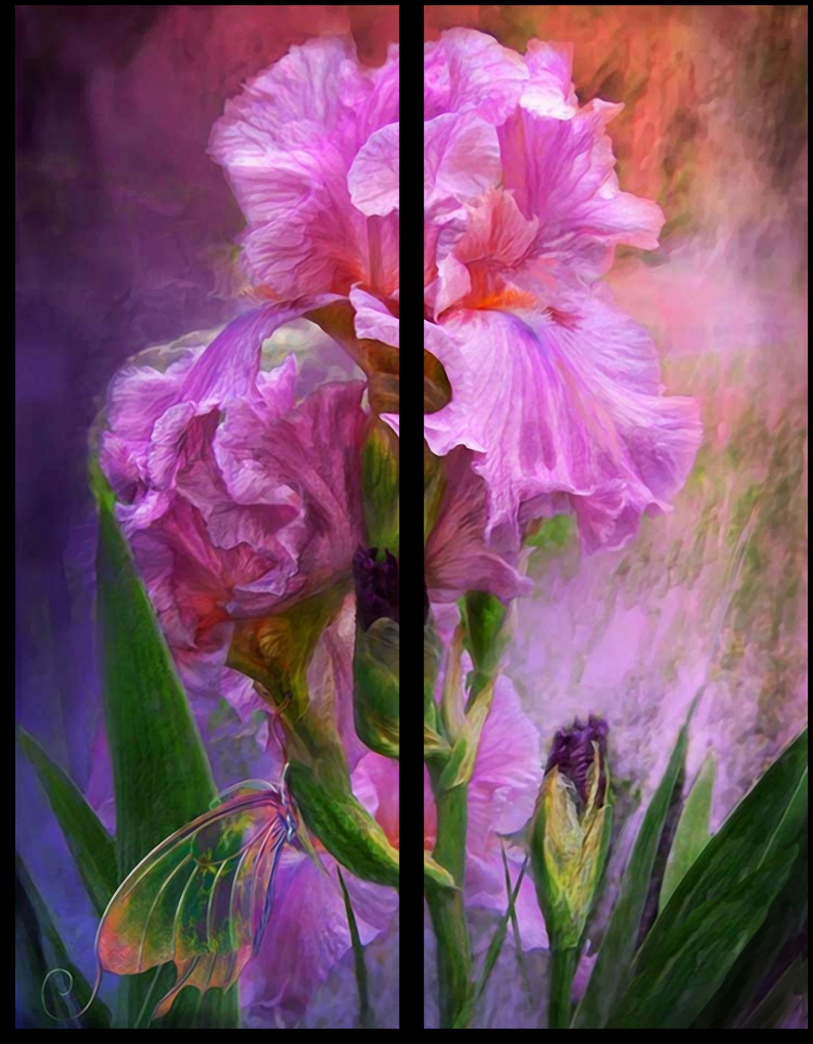 """Цветы Модульная картина """"Малиновый ирис"""" М264.png"""