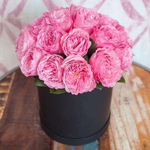 Шляпная коробка-миди с пионовидные розами Mariatheresia