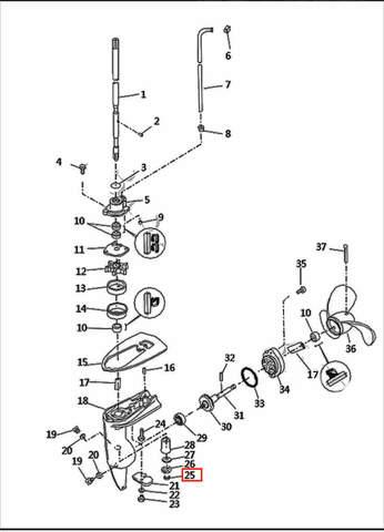 Кольцо стопорное ведущей шестерни  для лодочного мотора T2,5 SEA-PRO (8-25)