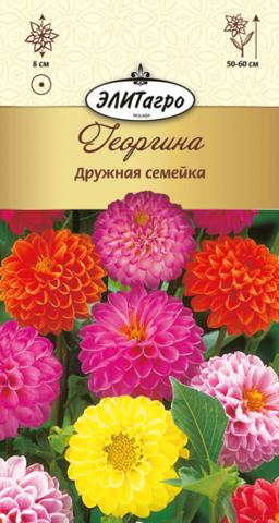 Семена Георгина Дружная семейка , одн