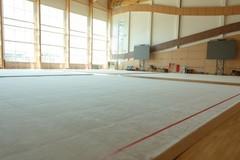 Ковер для художественной гимнастики (тренировочный) 14х14х0,020м.