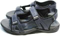 Спортивные сандалии мужские Mi Lord 2066EKO Blue.