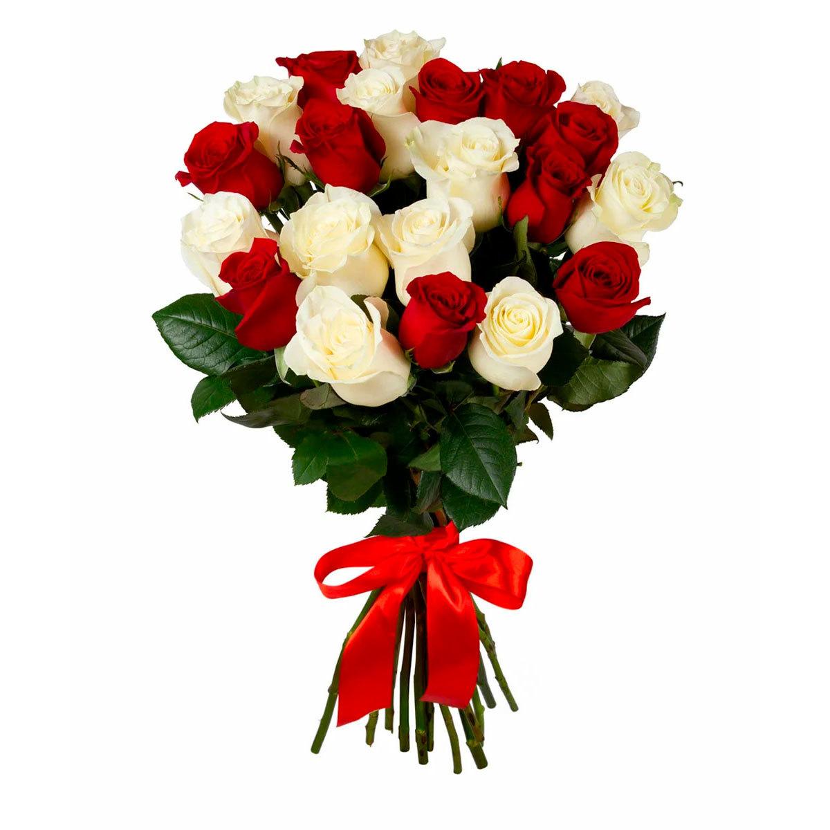 25 красных и белых роз (40 см)
