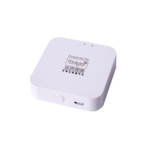 Двухканальный WI-FI шлюз RL-CS004