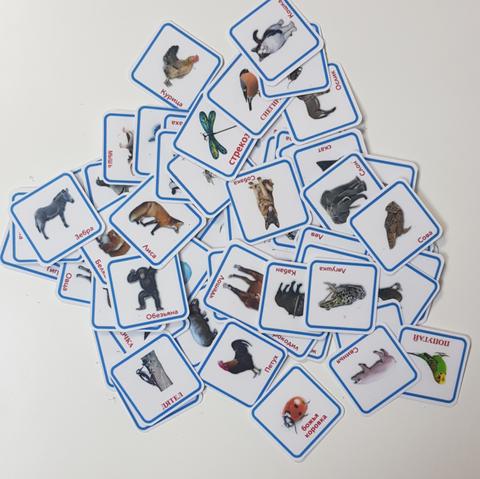 набор с  карточками пекс животные-птицы