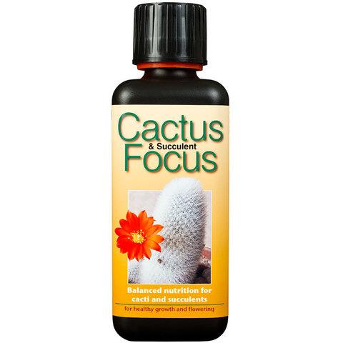 Удобрение Cactus Focus 300мл