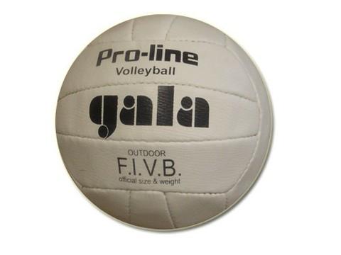 Мяч волейбольный GALA (пресс.кожа, шитый). :(DG):