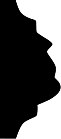 Молдинг гибкий 1.51.312