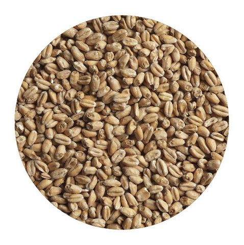 Солод «Wheat Blanc» Castle 1 кг