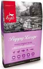 Беззерновой корм для щенков крупных пород, Orijen Puppy Large Dog