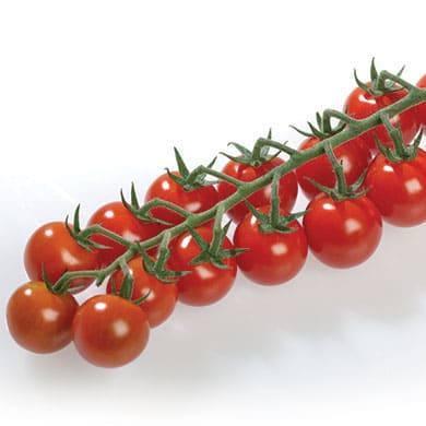 Томат Хуанита F1 семена томата индетерминантного (De Ruiter Seeds / Де Ройтер Сидс) Хуанита_1.jpg