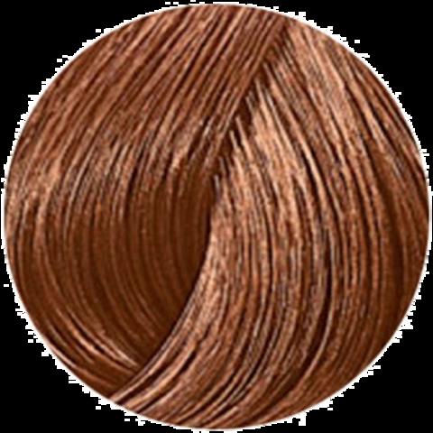 Wella Professional Color Touch 7/3 (Лесной орех) - Тонирующая краска для волос